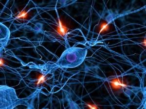 chronic migraines as a progressive brain disorder