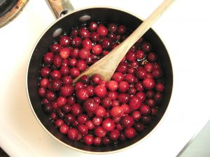 cranberries and urinary tract infections